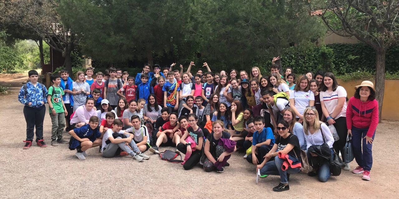 Excursión a Finca Caruana – Francés 2018